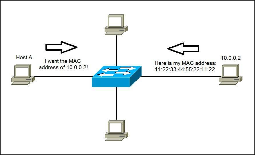 Address Resolution Protocol Arp Ccna