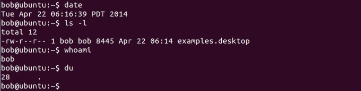 bash ubuntu