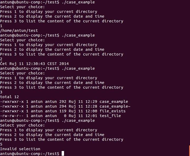 linux case statement