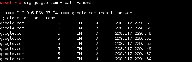 linux dig answer section
