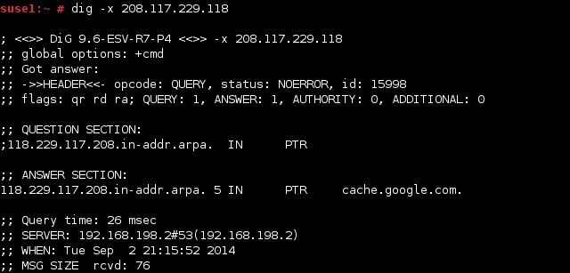 linux dig reverse dns lookup