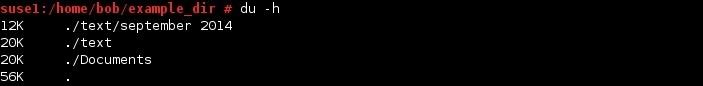 linux du command h option