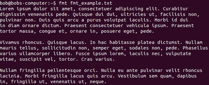 fmt command example