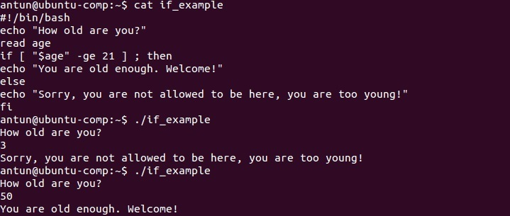 In a bash script, using the conditional