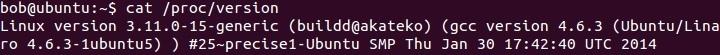 linux proc version