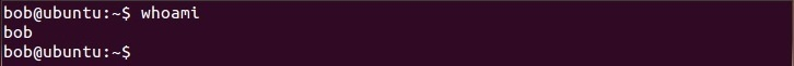linux whoami command