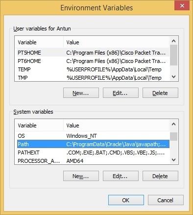 python print environment variables