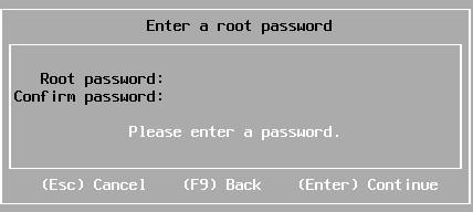 esxi installation set root password