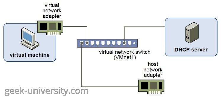host only networking configuration
