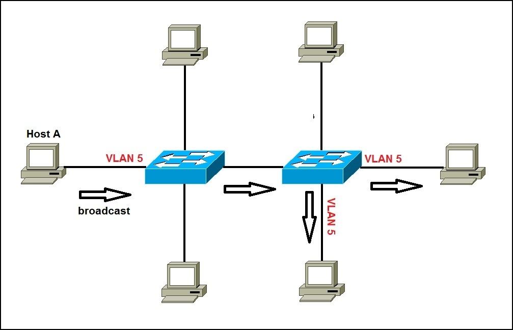 network with vlans