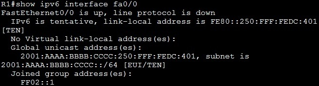 show ipv6 interface command