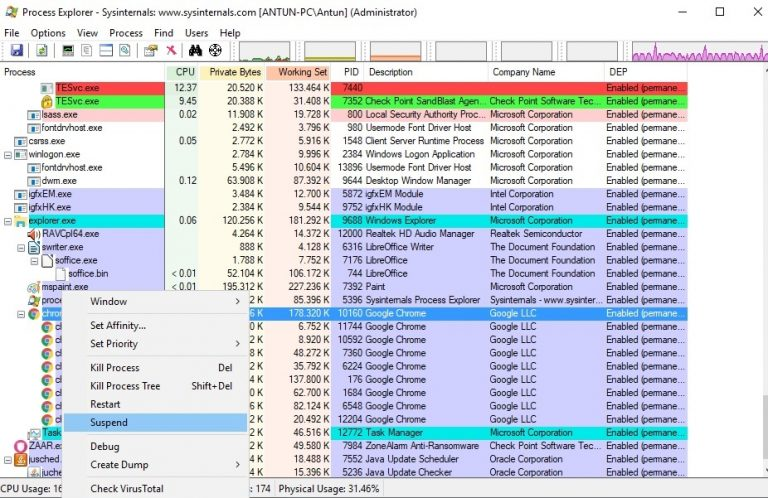 Process Explorer suspend a process